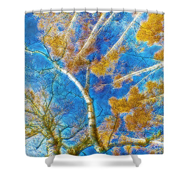 Colorful Mystical Forest Shower Curtain