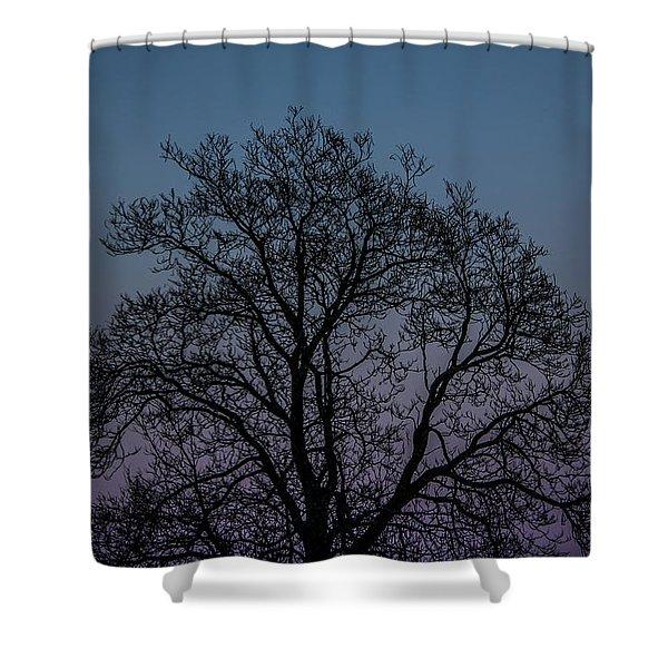 Colorful Subtle Silhouette Shower Curtain