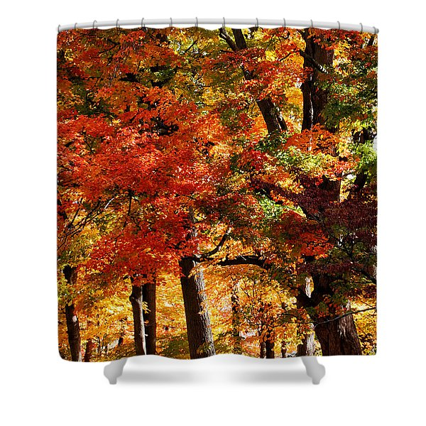 Shower Curtain featuring the photograph Colors Of Fall by William Selander