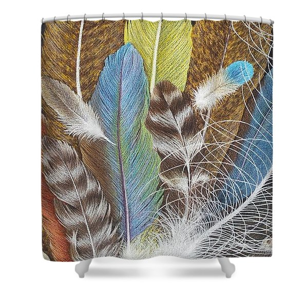 Colors Of Flight Shower Curtain