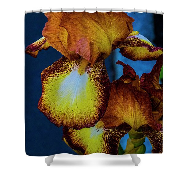 Colors Of Iris Shower Curtain