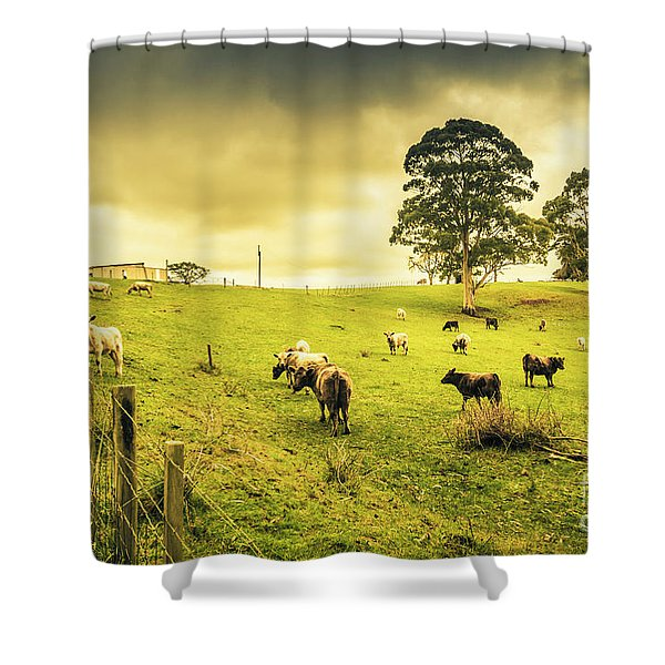 Colourful Australian Cattle Station Shower Curtain