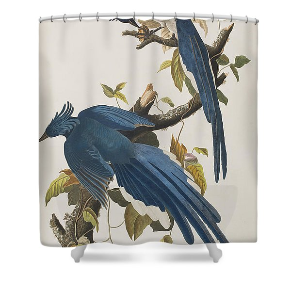 Columbia Jay Shower Curtain