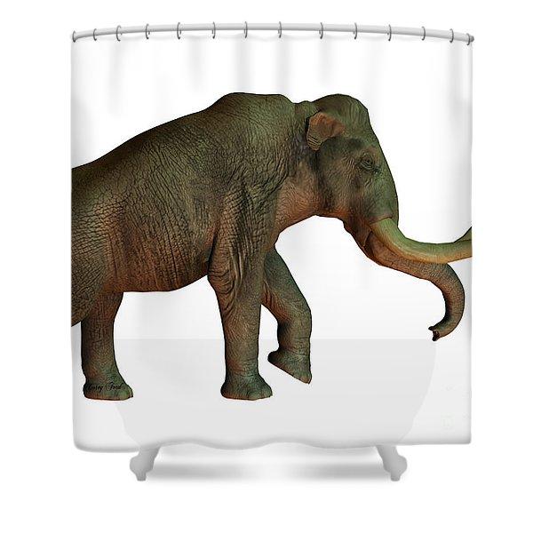 Columbian Mammoth On White Shower Curtain