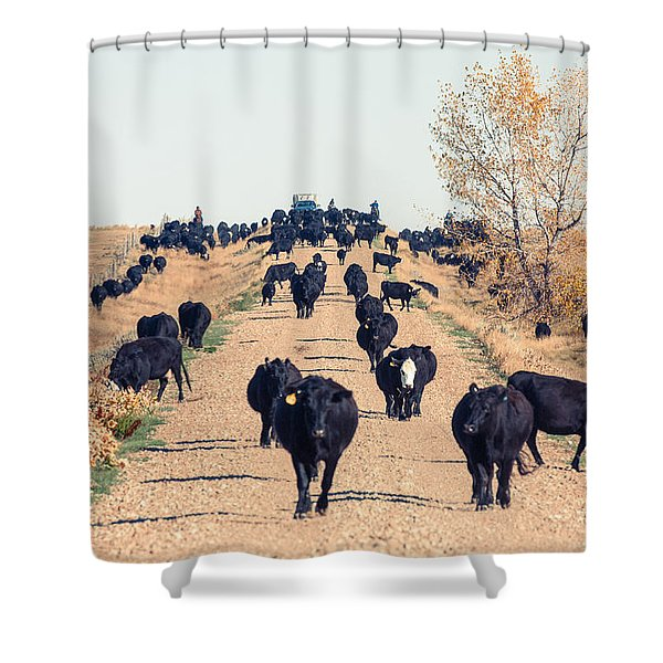 Coming Down The Road Shower Curtain