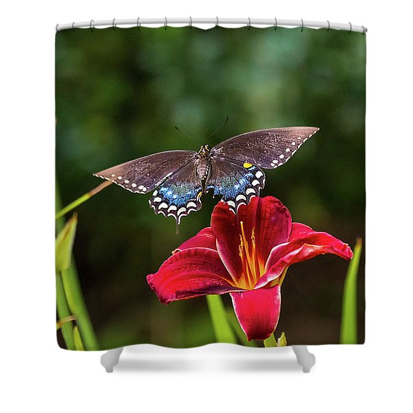 Coming In For A Landing Shower Curtain