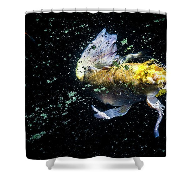 Coming Up For Air Shower Curtain