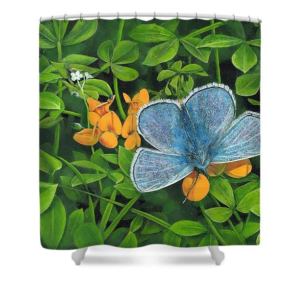 Common Blue On Bird's-foot Trefoil Shower Curtain