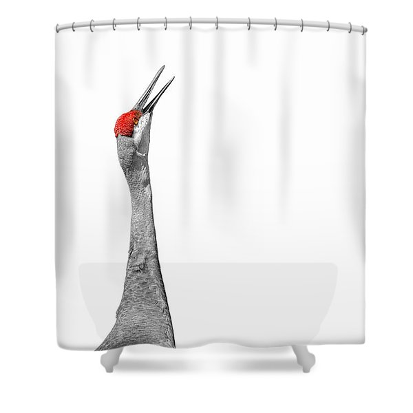 Communications Bwr Shower Curtain