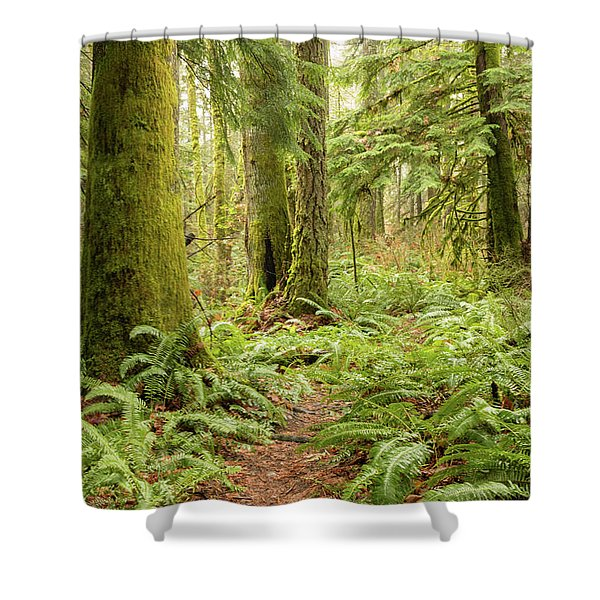 Comox Valley Forrest-5 Shower Curtain