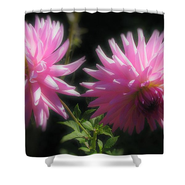 Companions Shower Curtain