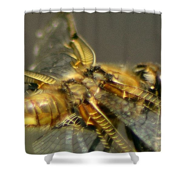 Complex Wings Shower Curtain