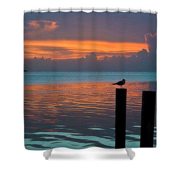Conch Key Sunset Bird On Piling Shower Curtain