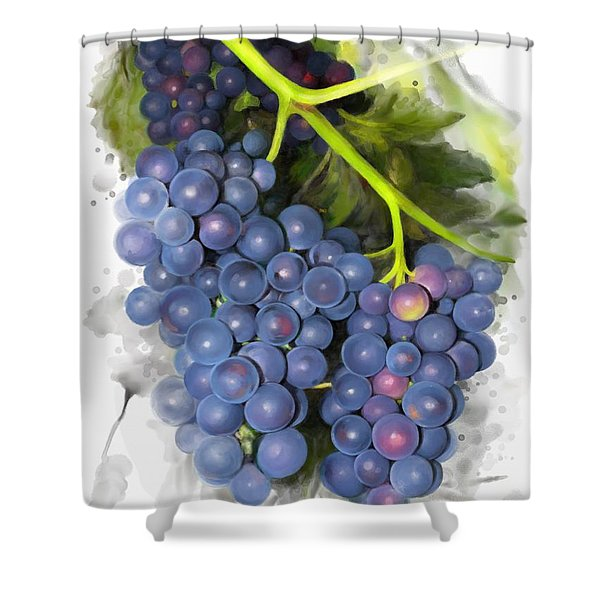 Concord Grape Shower Curtain