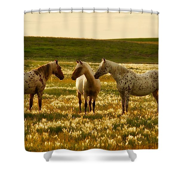 The Conference Shower Curtain