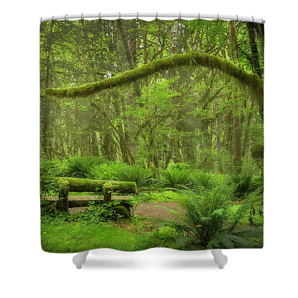 Contemplative Rain Forest Shower Curtain