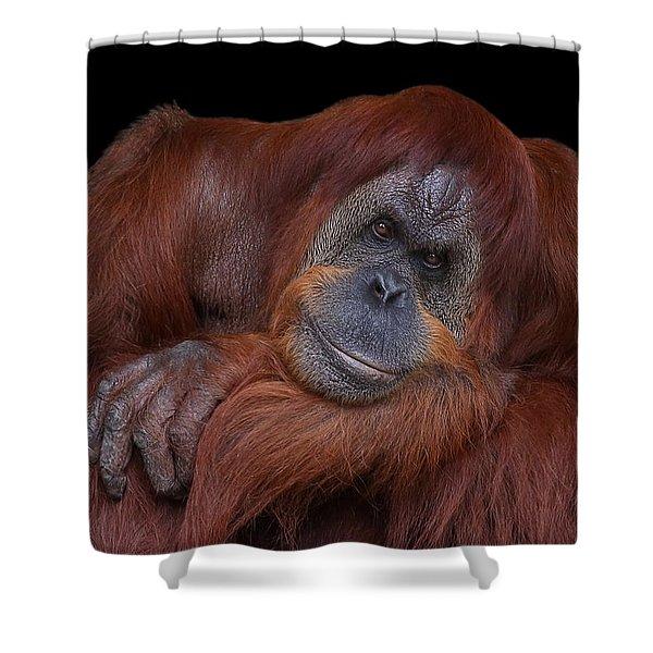 Contented Orangutan Shower Curtain