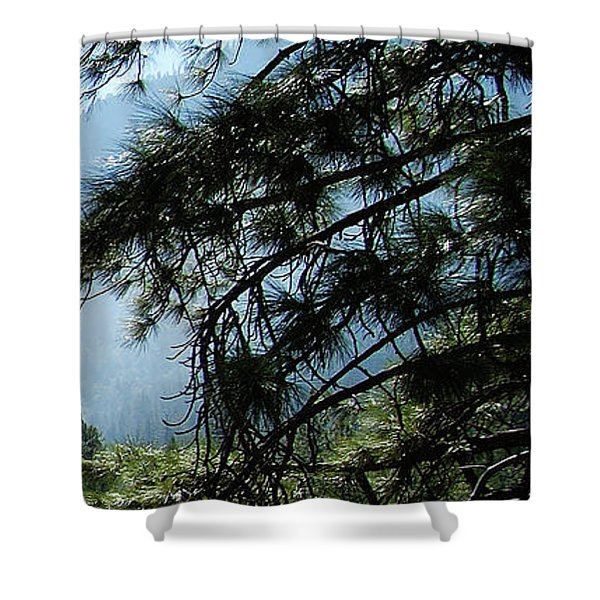4 Of 4 Controlled Burn Of Yosemite Section Shower Curtain