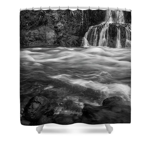 Convergence Bw Shower Curtain