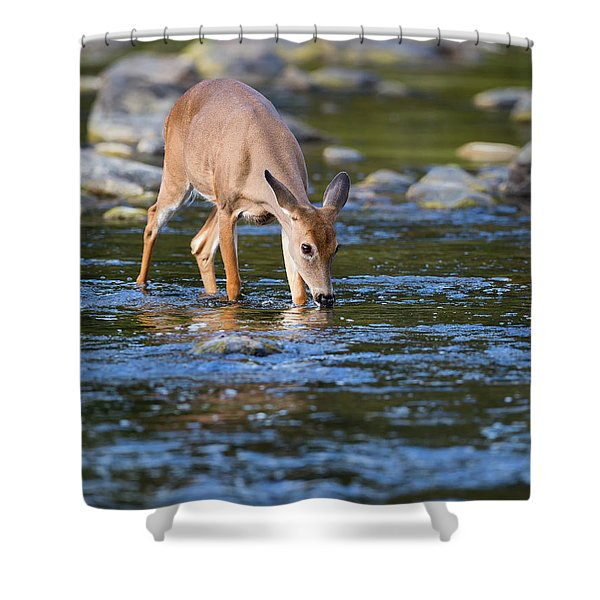 Cool Drink Shower Curtain