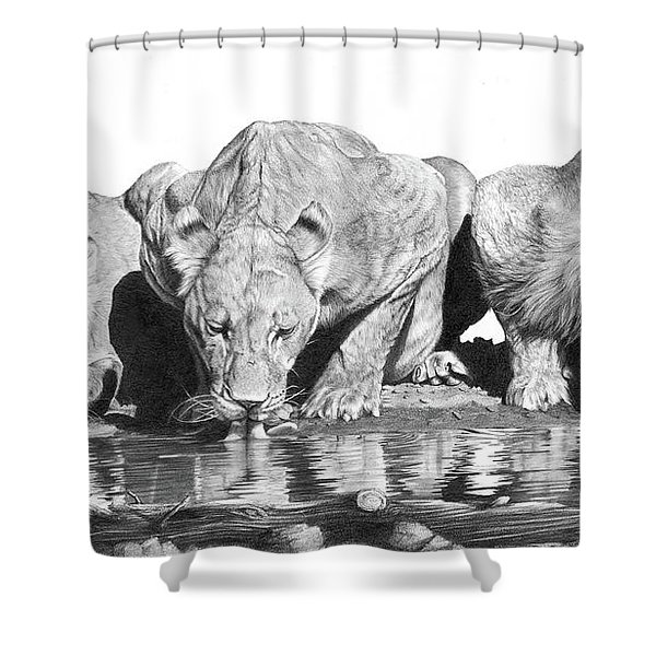 Cool For Cats Shower Curtain