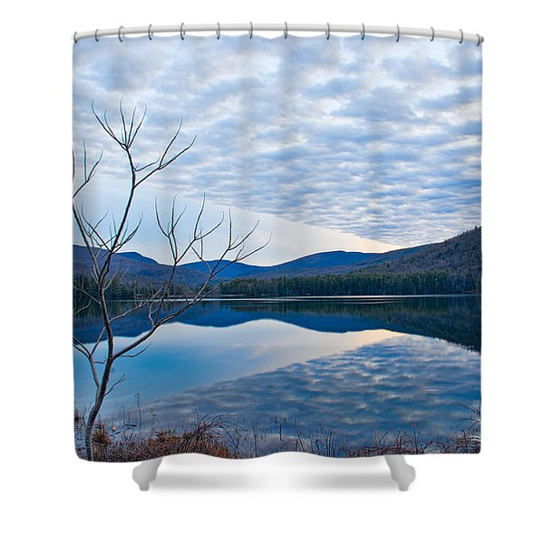 Shower Curtain featuring the photograph Cooper Lake Grunge by Nancy De Flon