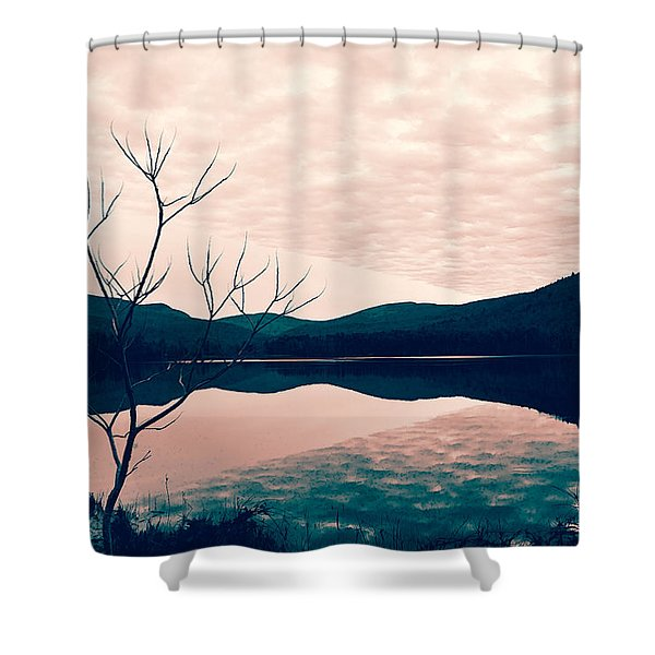 Shower Curtain featuring the photograph Cooper Lake Tint by Nancy De Flon