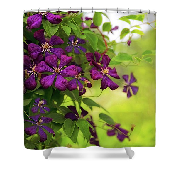 Copious Clematis Shower Curtain