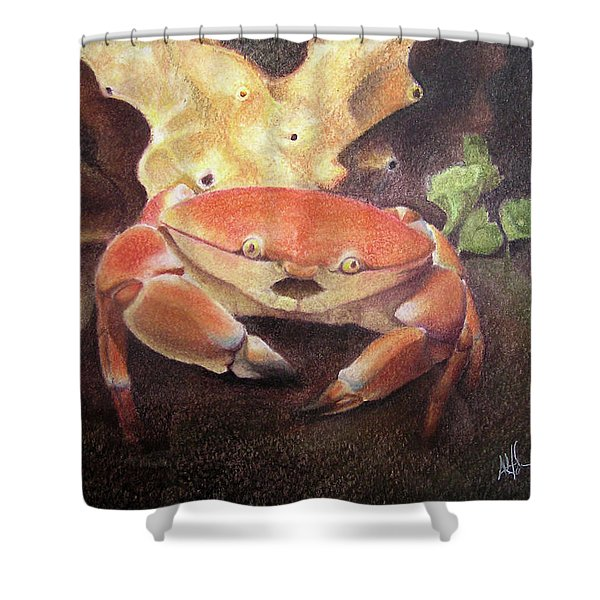 Coral Crab Shower Curtain