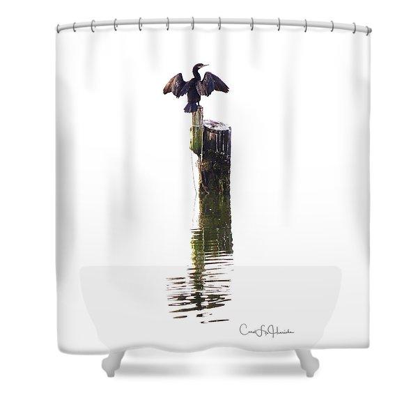 Cormorant Sunning Shower Curtain