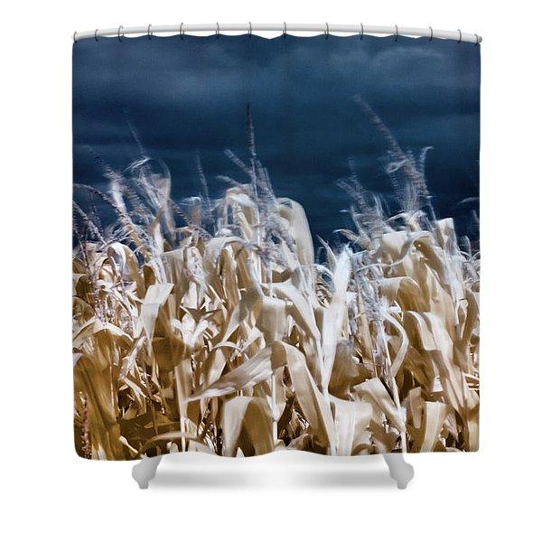 Corn Field Shower Curtain