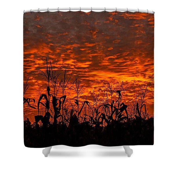 Corn Under A Fiery Sky Shower Curtain