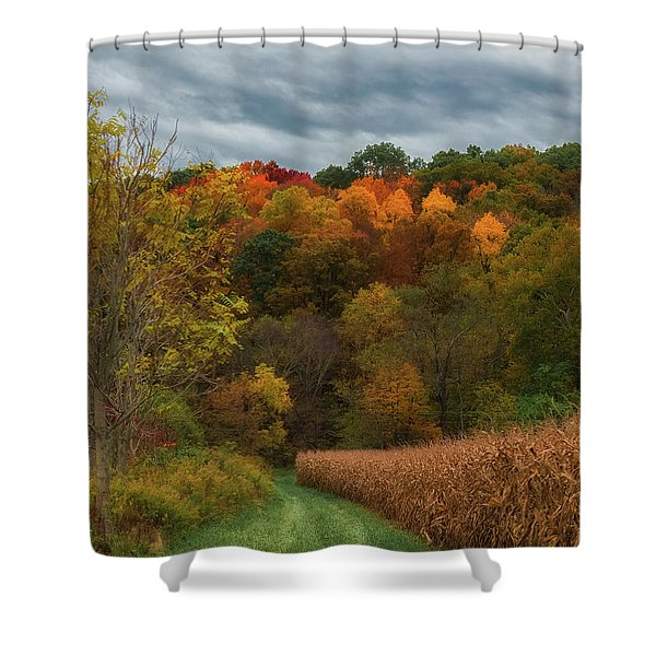 Cornfield In Fall  Shower Curtain
