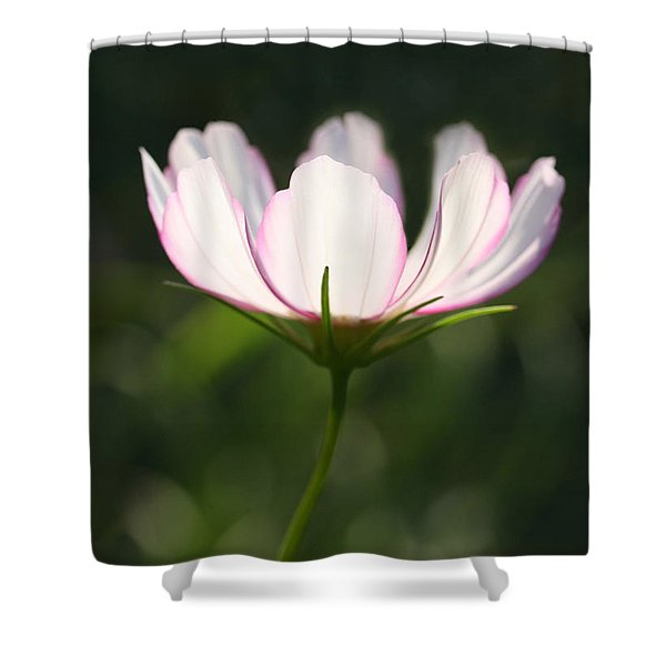 Cosmo Delicate Balance Shower Curtain