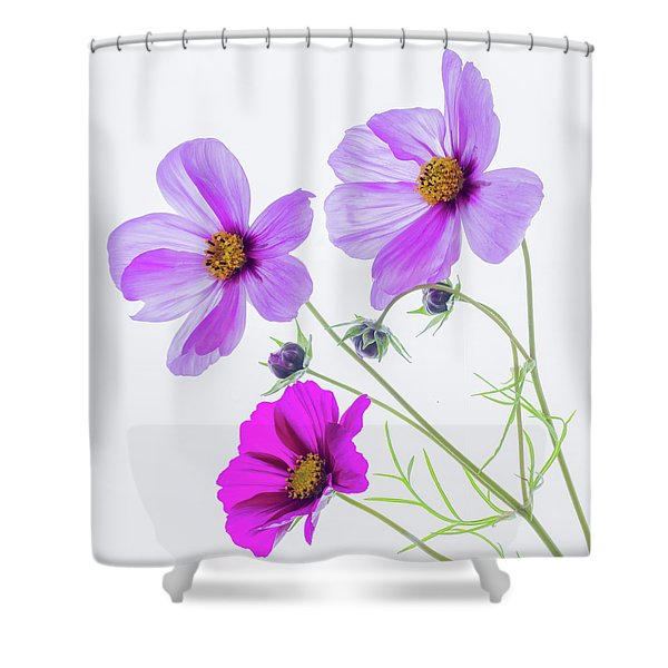 Cosmos Bright Shower Curtain