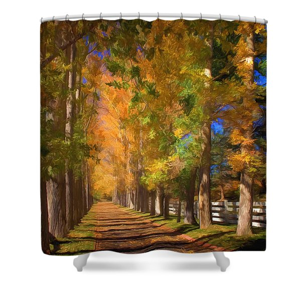 Cottonwood Alley Shower Curtain