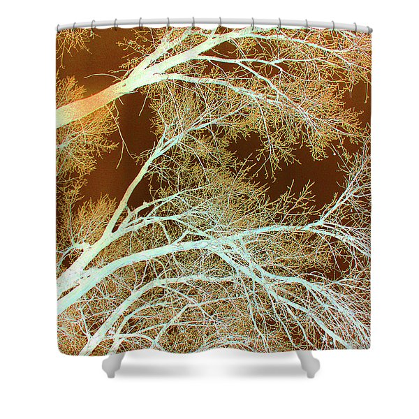 Cottonwood Conflux Shower Curtain