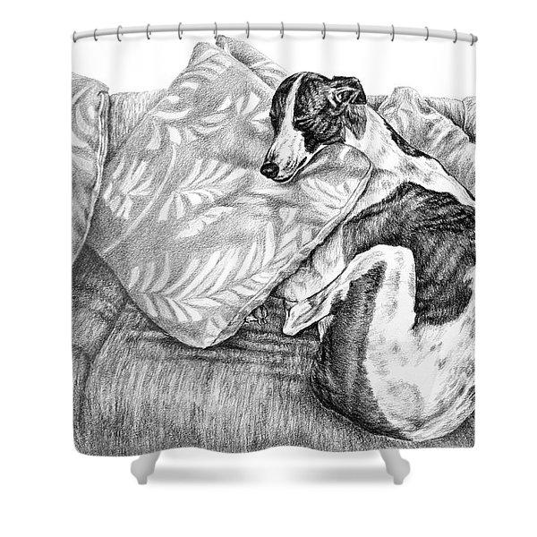 Couch Potato Greyhound Dog Print Shower Curtain