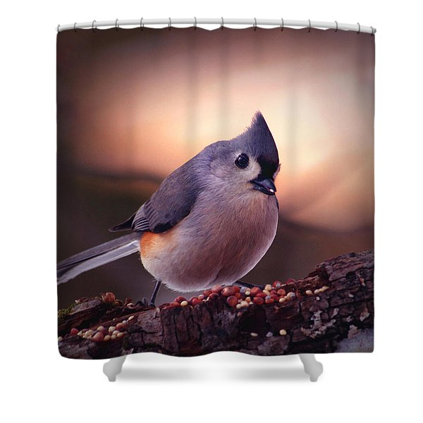 Country Mouse... Shower Curtain