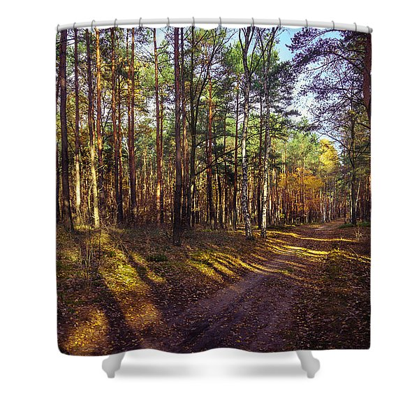 Country Road Through The Forest Shower Curtain