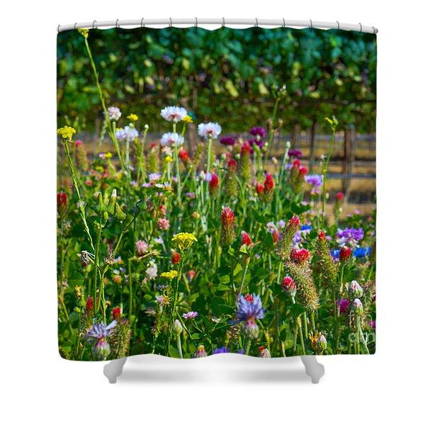Country Wildflowers II Shower Curtain