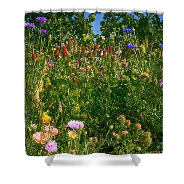 Country Wildflowers IIi Shower Curtain