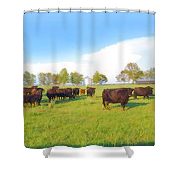 Cow Expance Shower Curtain