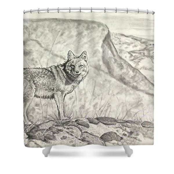 Coyote Shower Curtain
