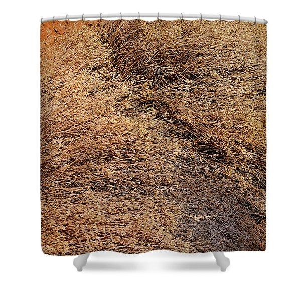 Coyote Brush Shower Curtain