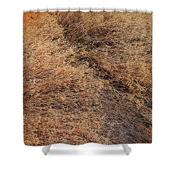 Coyote Brush Shower Curtain