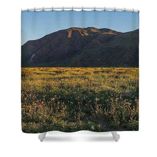 Coyote Mountain And Henderson Canyon Road Shower Curtain