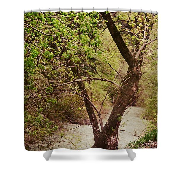 Cozy Stream In American Fork Canyon Utah Shower Curtain