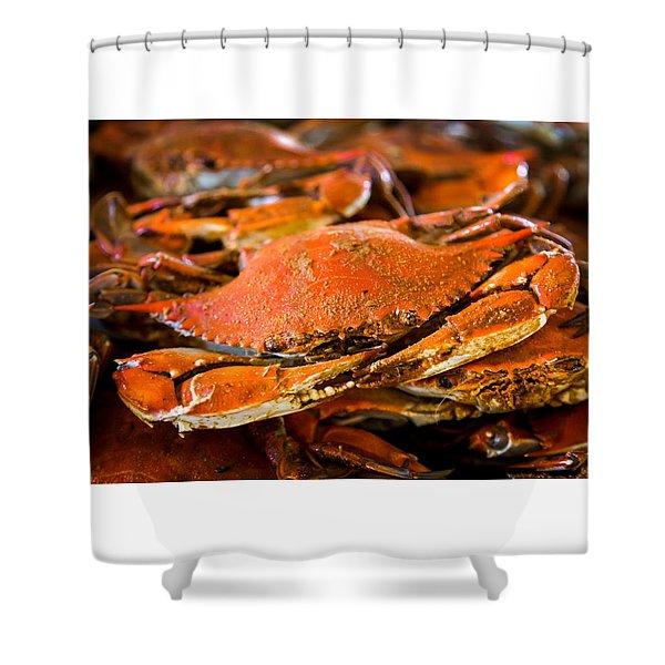 Crab Boil Shower Curtain