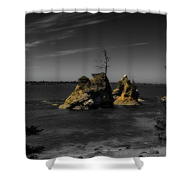 Crab Rock Shower Curtain